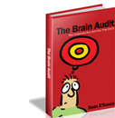 brainaudit_book1