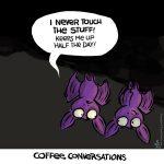 bats, coffee, Sean D'Souza