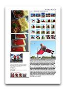 InDesignscreenshots-presell004