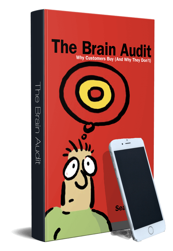 The Brain Audit: Business System for Small Business