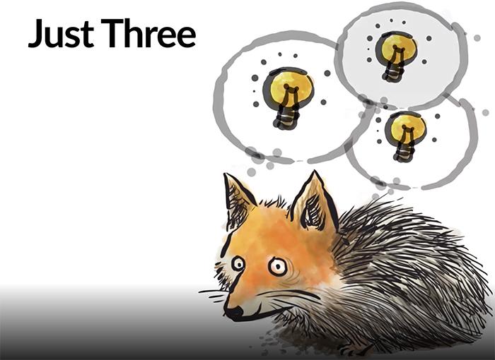 Goal Setting: Fedgehog Concept